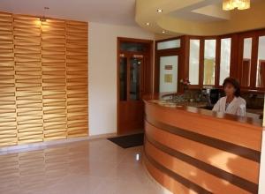 Aranybánya Hotel Telkibánya - Recepció